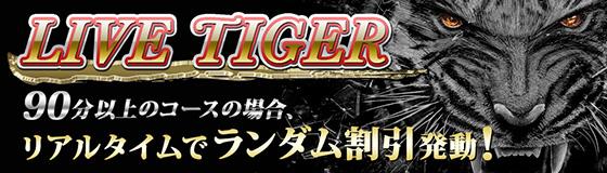 LIVE TIGER始動!!
