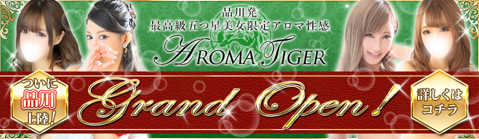 アロマタイガー 品川店 グランドオープン!